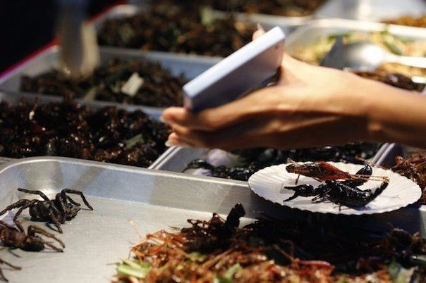 Двадцать четыре табу в употреблении пищи со всего мира, которые стоит запомнить