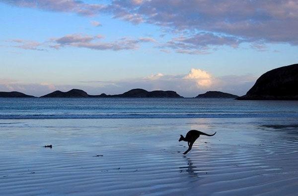 Австралия названа самой счастливой страной