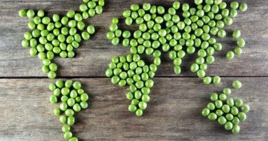 В каких странах самая здоровая пища? 10 самых полезных кухонь мира
