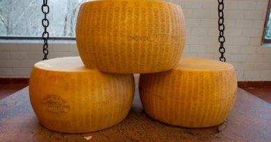 10 мест, где можно отведать свежий сыр