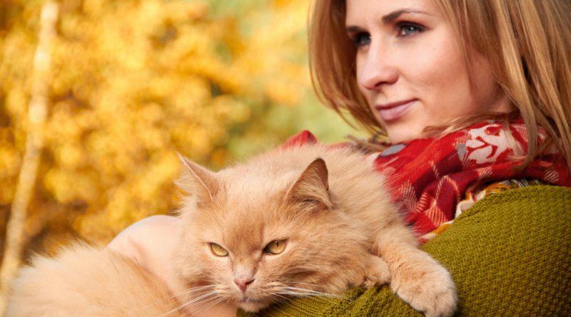 Психологи утверждают, что по тому, какое домашнее животное выбирает человек, можно многое рассказать о его характере.
