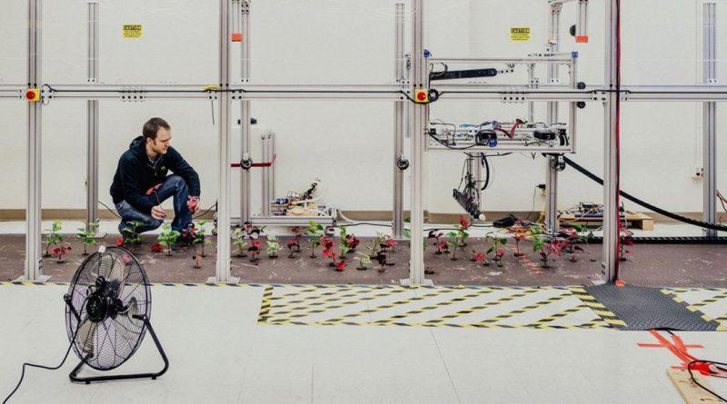 Агроботы произведут революцию в сельском хозяйстве