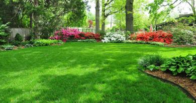 Хотите красивый газон?