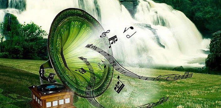 10 фактов о музыке и звуках природы