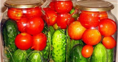 Помидоры с огурцами на зиму (овощное ассорти)