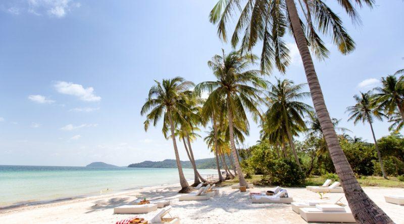 Когда пальмы — большие: где отдохнуть с детьми весной