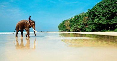 7 самых чистых и спокойных пляжей Индии