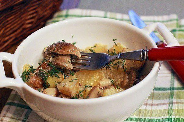 Картофель, тушенный со свежими грибами