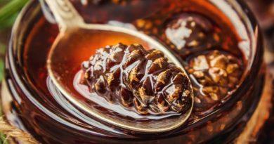 Варенье из шишек: рецепт полезного хвойного десерта