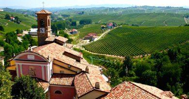 Интересные винодельческие регионы Италии