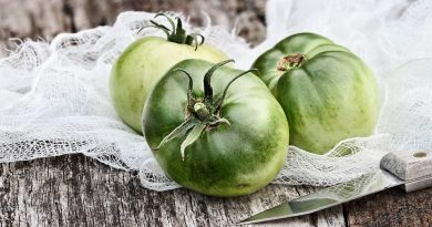 Заготовки из зеленых помидор с чесноком на все случаи жизни