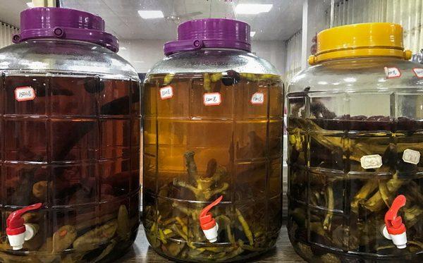 Китайцы делают вино из костей тигров