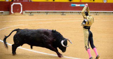 В каких районах Испании можно посмотреть корриду?