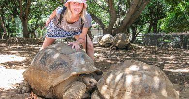 Развлечения в раю: чем заняться на Маврикии?