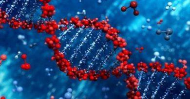 Открытия и технологии, связанных с молекулой ДНК и генами