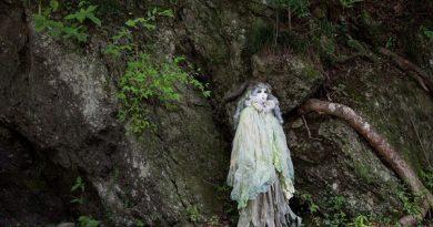 Лес мертвецов Аокигахара Дзюкай