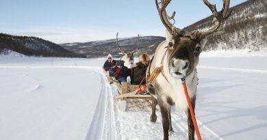 Что сделать в Финляндии зимой?