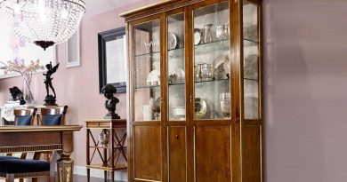 Шкаф со стеклянными створками: плюсы и минусы