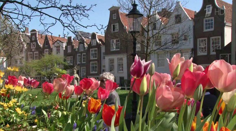 Интересные факты о Нидерландах
