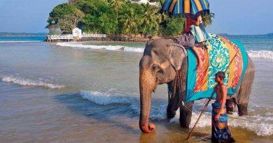 С какими опасностями и проблемами туристы могут столкнуться на Гоа?