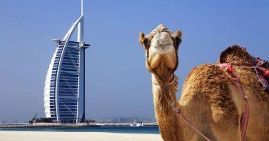Бюджетный отдых в Эмиратах или полная программа в Турции: как определиться?