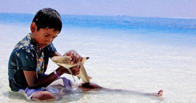 5 природных опасностей на Мальдивах