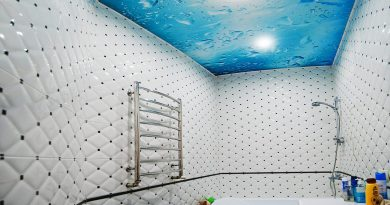 Какой потолок выбрать для ванной?