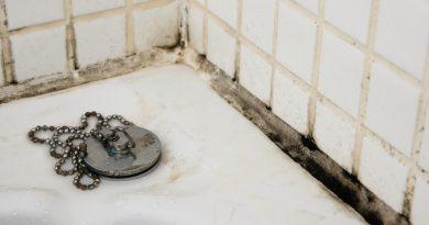 Как убрать плесень в ванной?