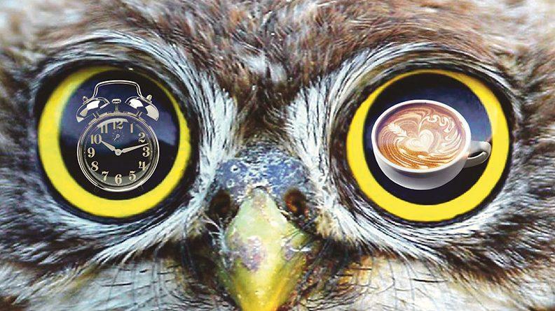 Перевоплощаемся из совы в жаворонка: 7 советов
