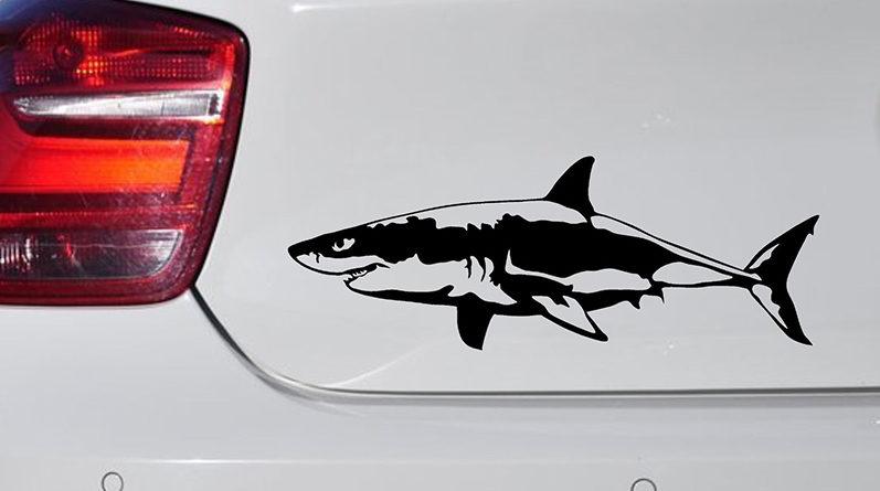 Что означает наклейка в виде акулы на автомобиле
