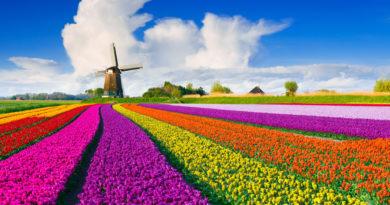 5 сказочных мест, которые существуют в Нидерландах