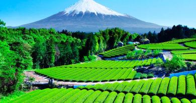 5 удивительных стран, в которых обязан побывать каждый путешественник