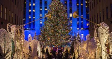 Главная рождественская ель установлена в Нью-Йорке